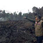 Petugas BPBD di lokasi karhutla Bukit Suligi, Rokan Hulu, Riau.
